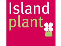 Islandplant